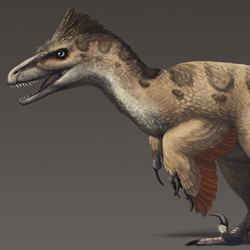 The Most Accurate Inaccurate Utahraptor